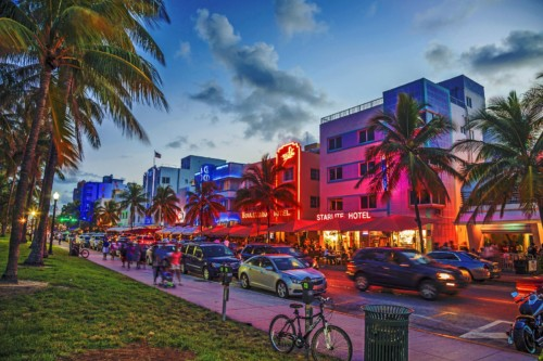 https://suiteness.imgix.net/destinations/miami/bigstock-people-enjoy-palm-trees-and-ar-91807295.jpg?mono=33EBC862&blend=2A303F&shad=90&gam=20&auto=format,compress